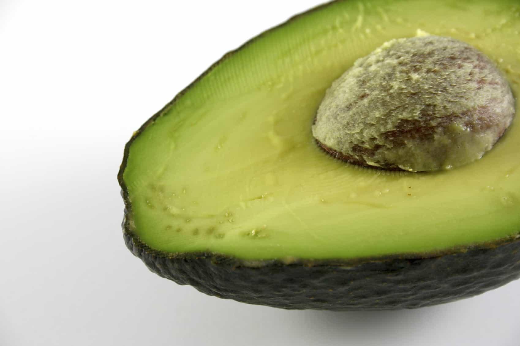 Avocado High Res image